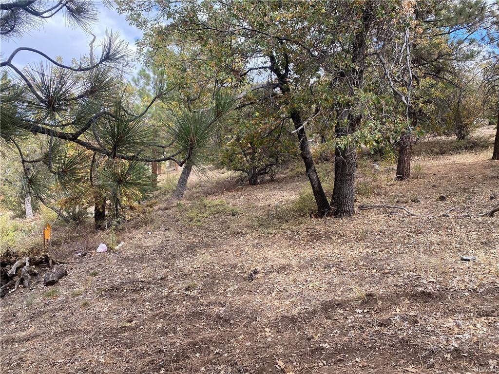 43628 Ridge Crest Drive Property Photo 16