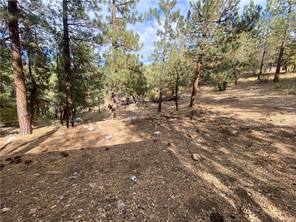43628 Ridge Crest Drive Property Photo 17