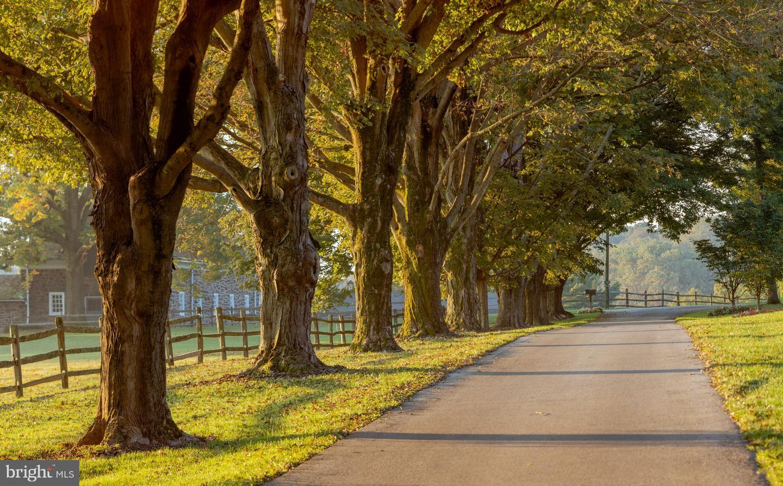 Pennsylvania Real Estate Listings Main Image