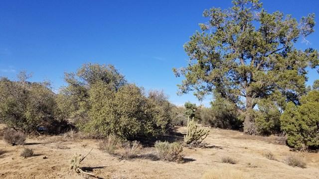 0 Palm Canyon Drive Property Photo