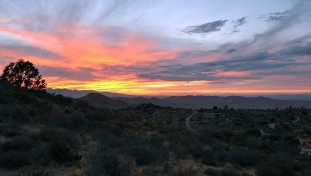 0 Oak Springs Road Property Photo - Apple Valley, CA real estate listing