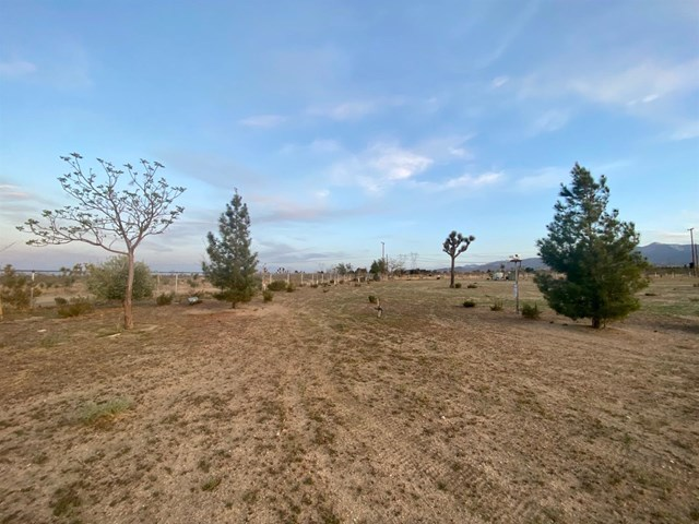 11450 Campanula Road Property Photo