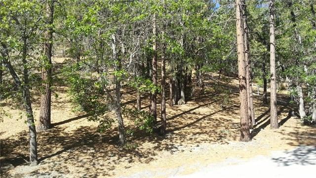 0 Vac/vic Big Pines/logwood Drive Property Photo