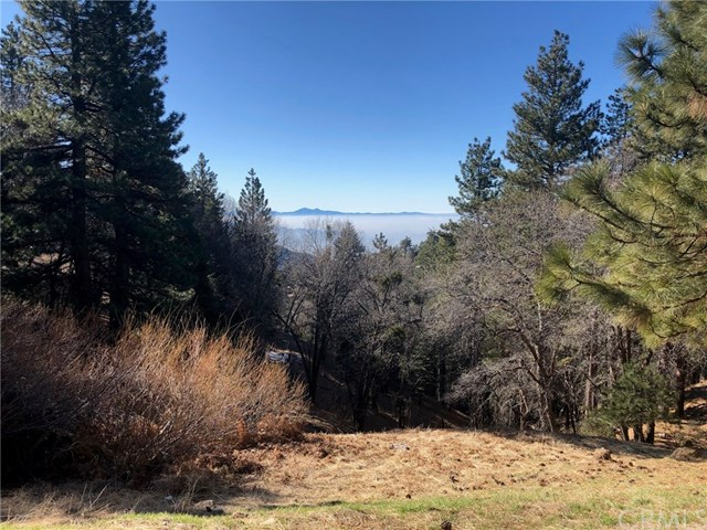 31011 All View Property Photo