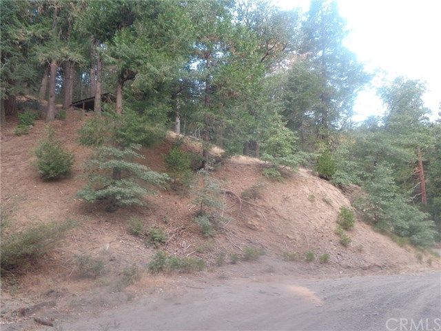 33 Mojave River Road Property Photo