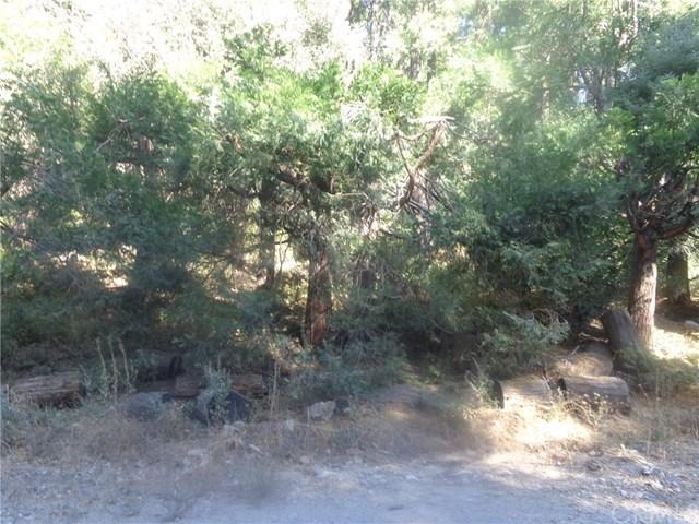 40 Sawpit Creek Road Property Photo