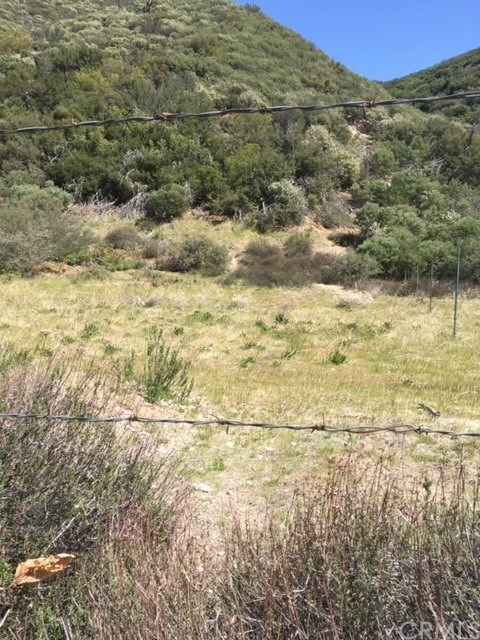 0 Lytle Creek Road Property Photo