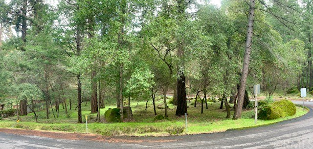 3030 Madrone Drive Property Photo