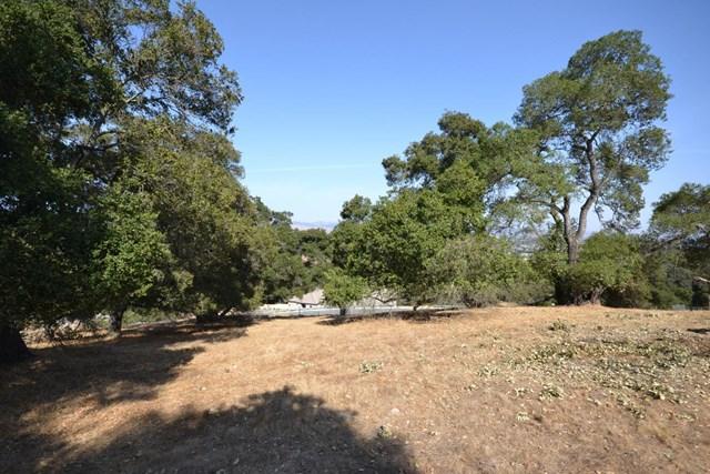 9035 Tea Tree Way Property Photo