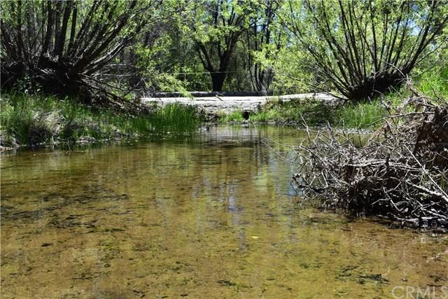 4892 Pegleg Road Property Photo