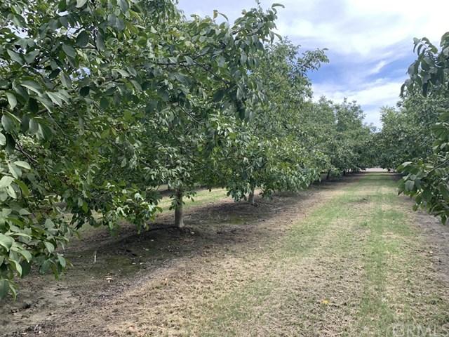 6010 Olive Road Property Photo