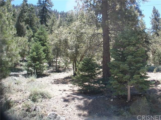 15024 Chestnut Drive Property Photo