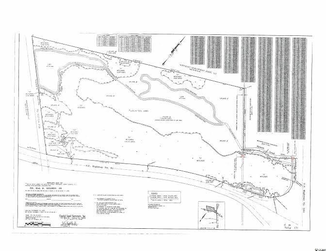 (301ac) Hwy 501 Highway 501 Property Photo 2