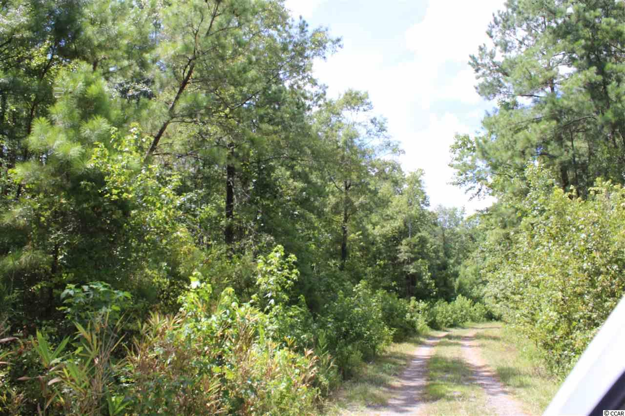 Tbd Old River Rd. Property Photo 9