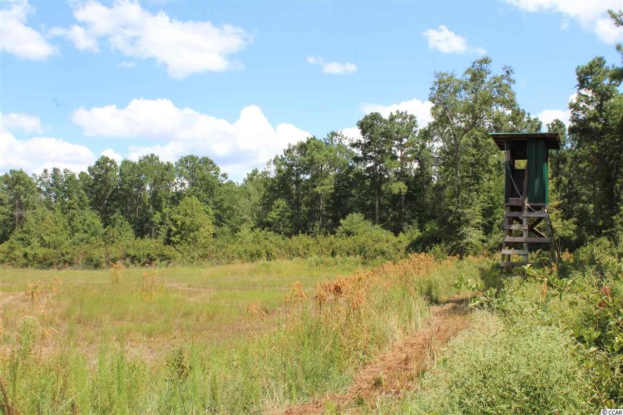 Tbd Old River Rd. Property Photo 12