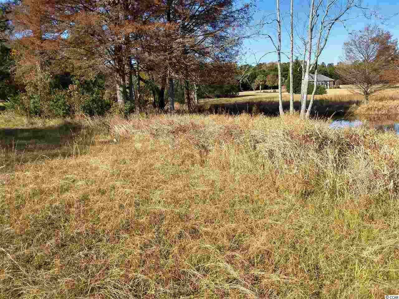 Clarendon County Real Estate Listings Main Image