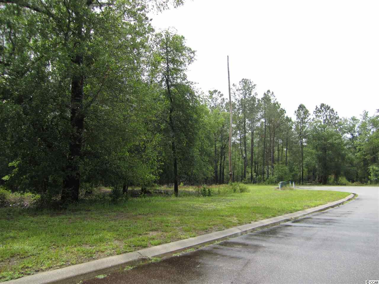 349 Cypress Flat Ct. Property Photo