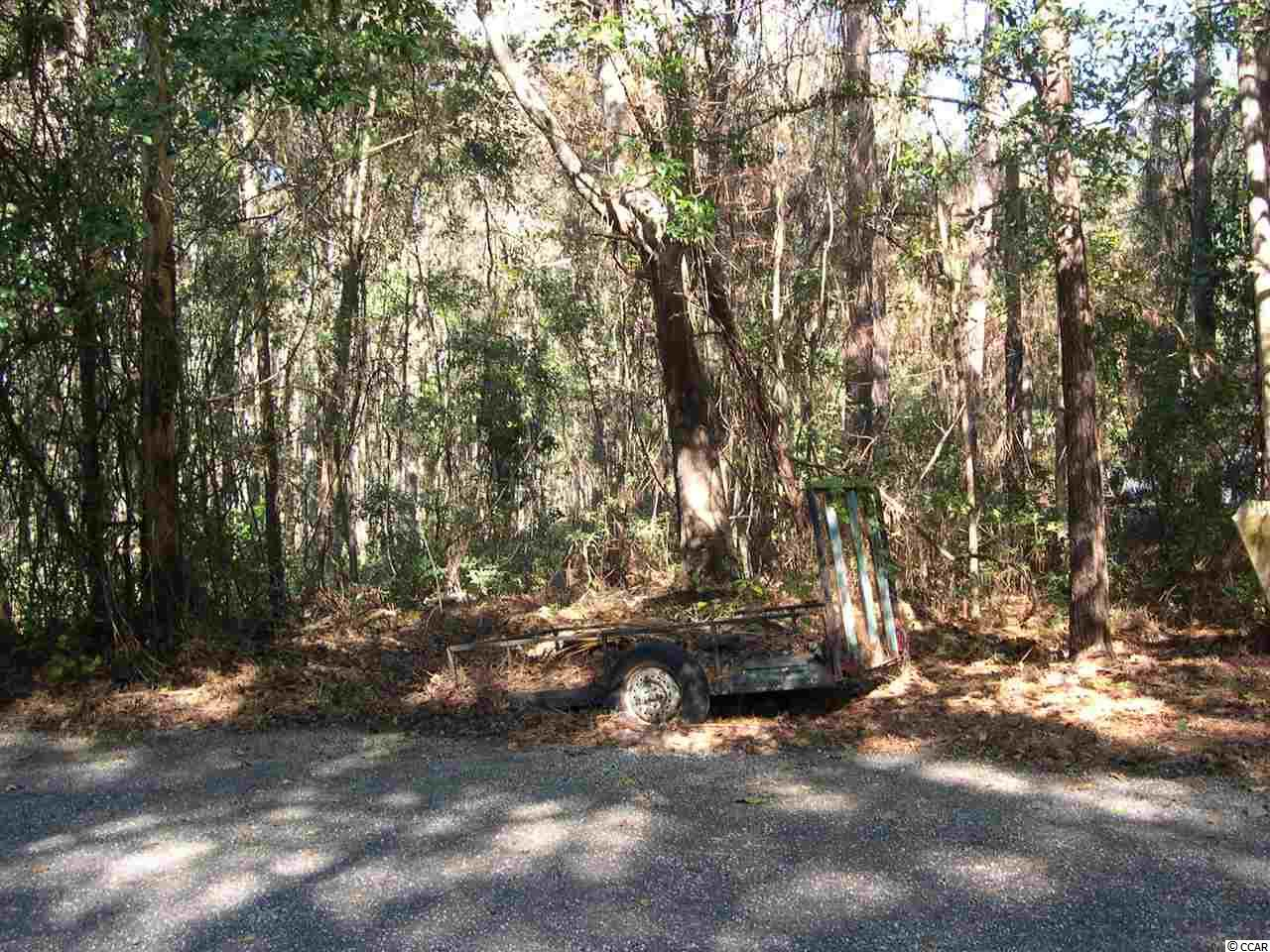 0 Summer Duck Cove Property Photo