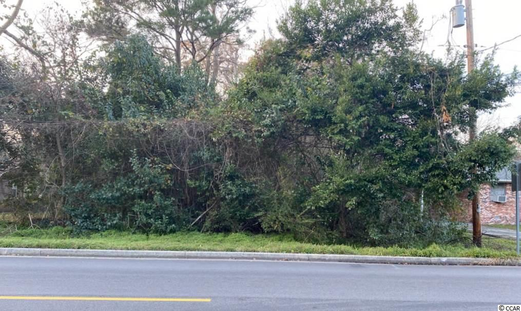 Btw Section- City Of Myrtle Beach Real Estate Listings Main Image