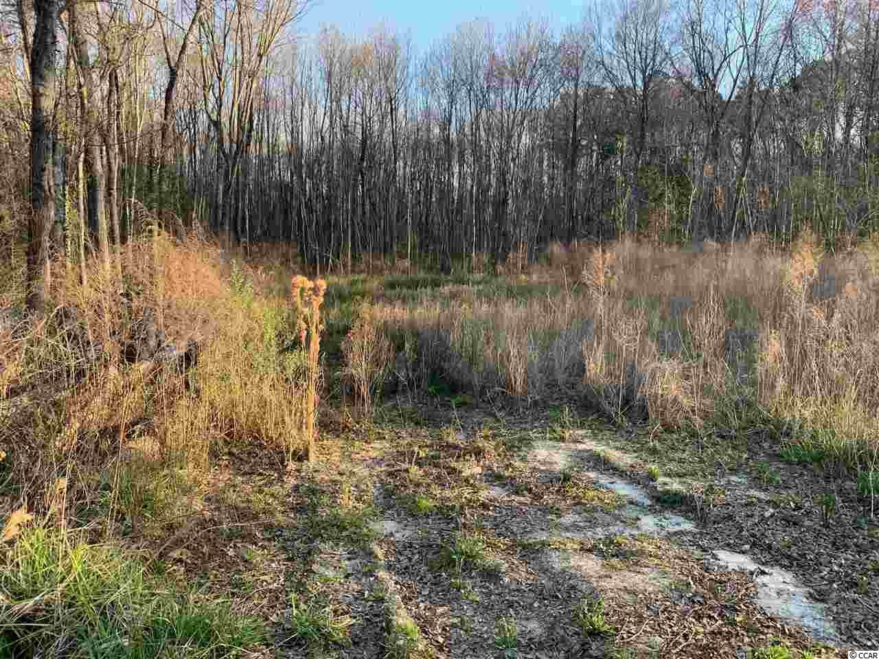390 Red Fox Rd. Property Photo 1