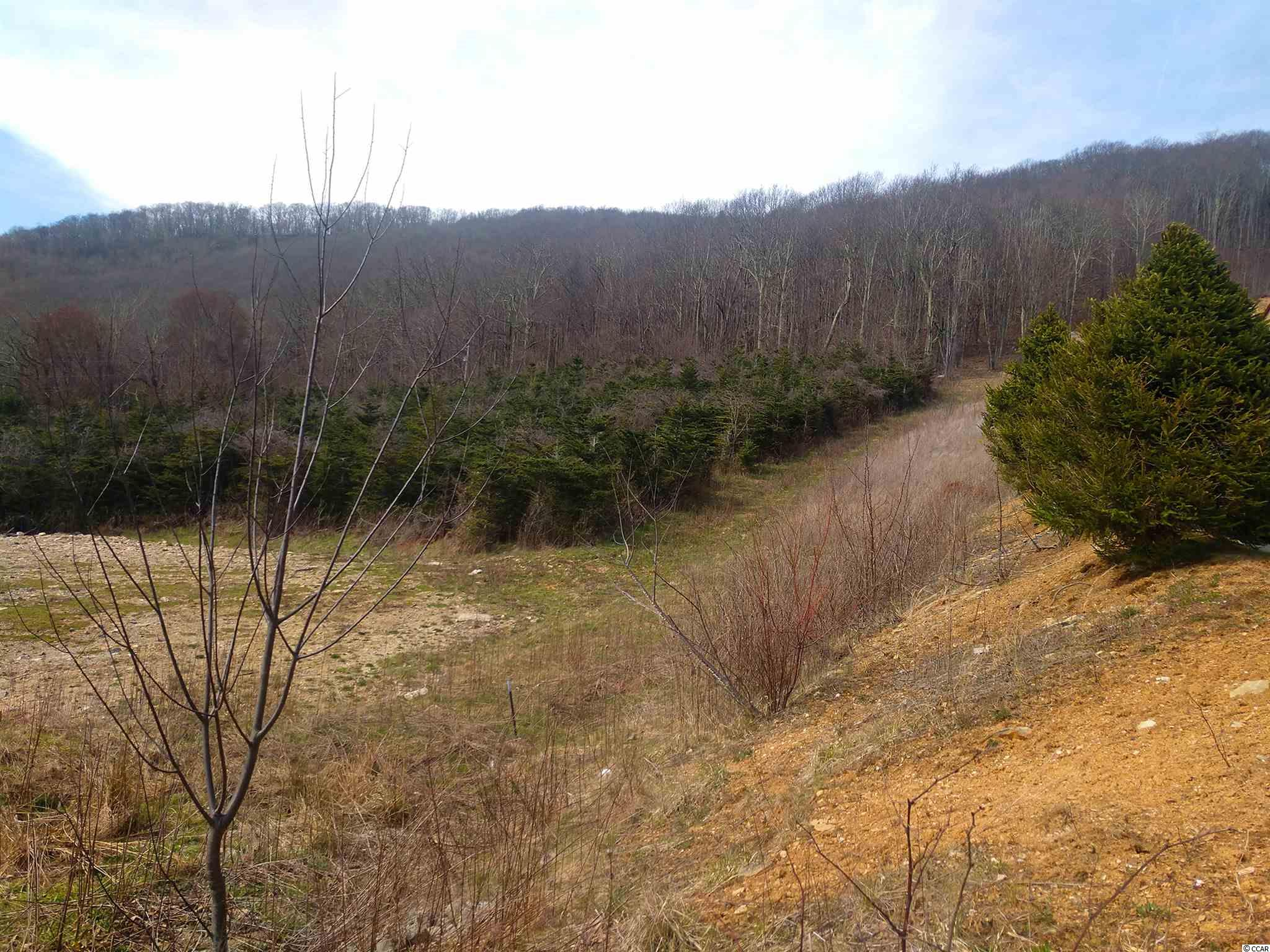 Avery County Real Estate Listings Main Image