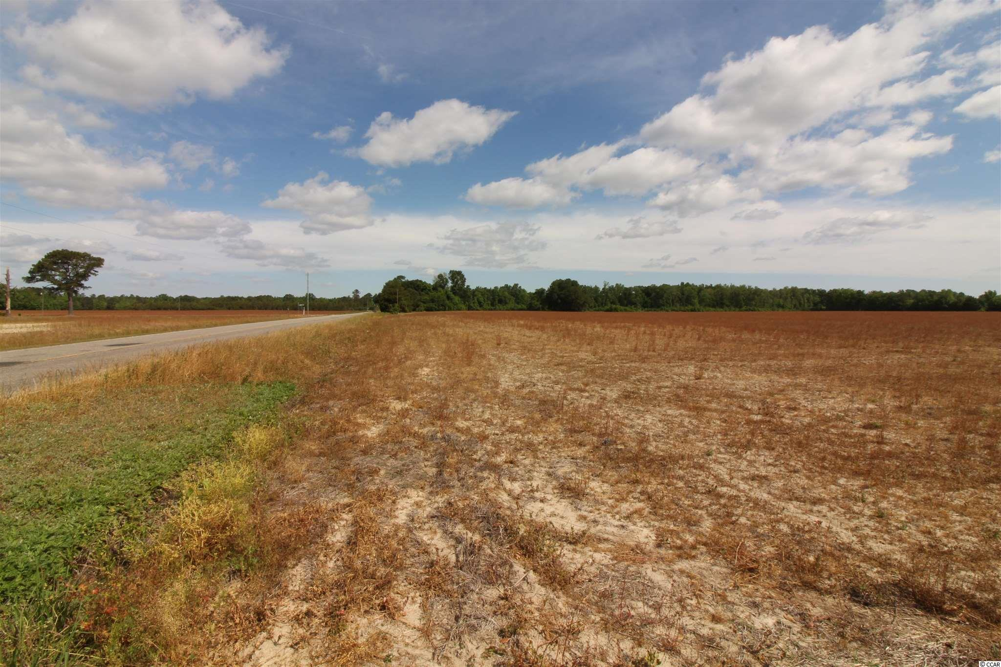 Tbd Old River Rd. Property Photo 5