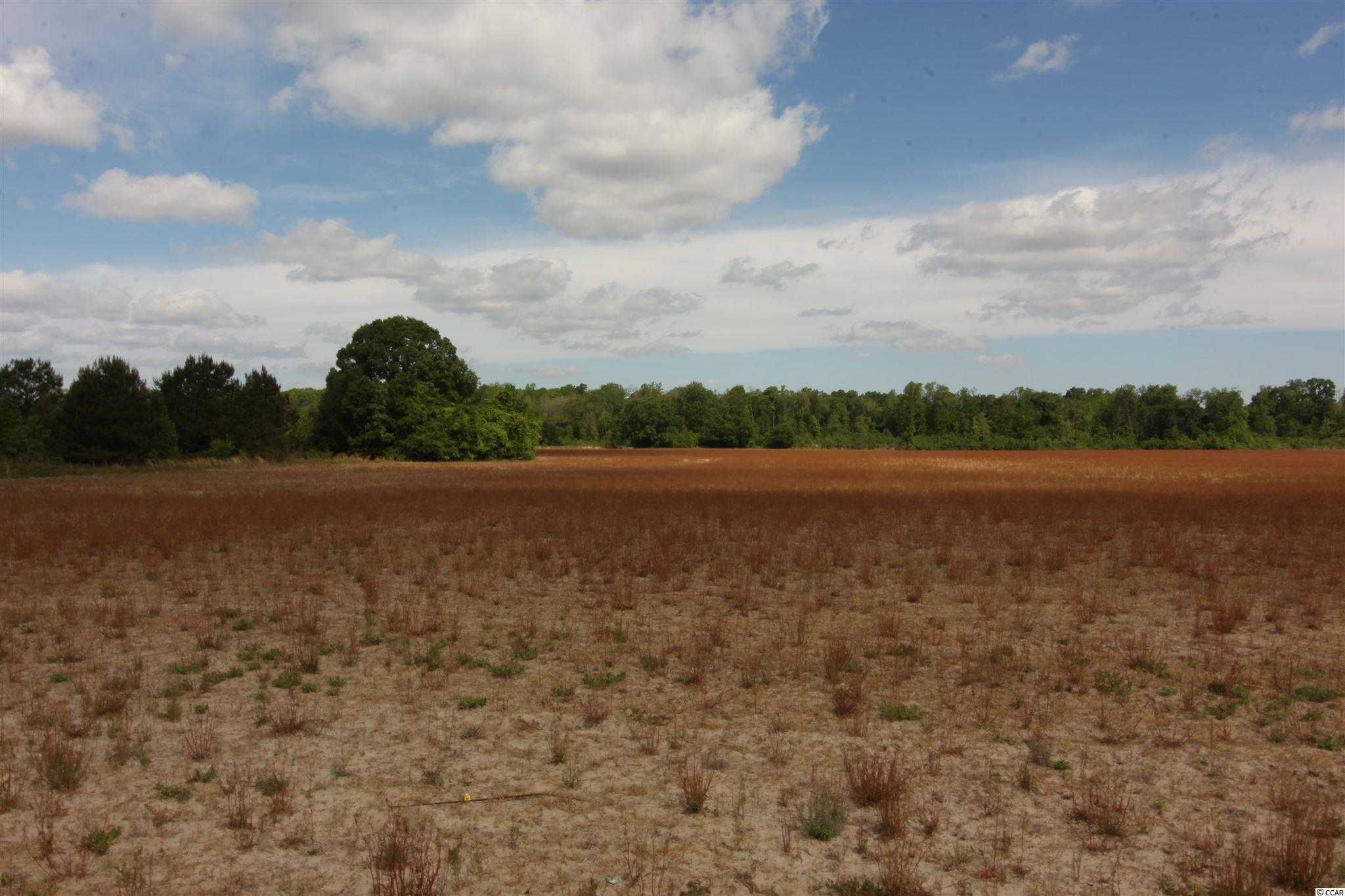Tbd Old River Rd. Property Photo 7
