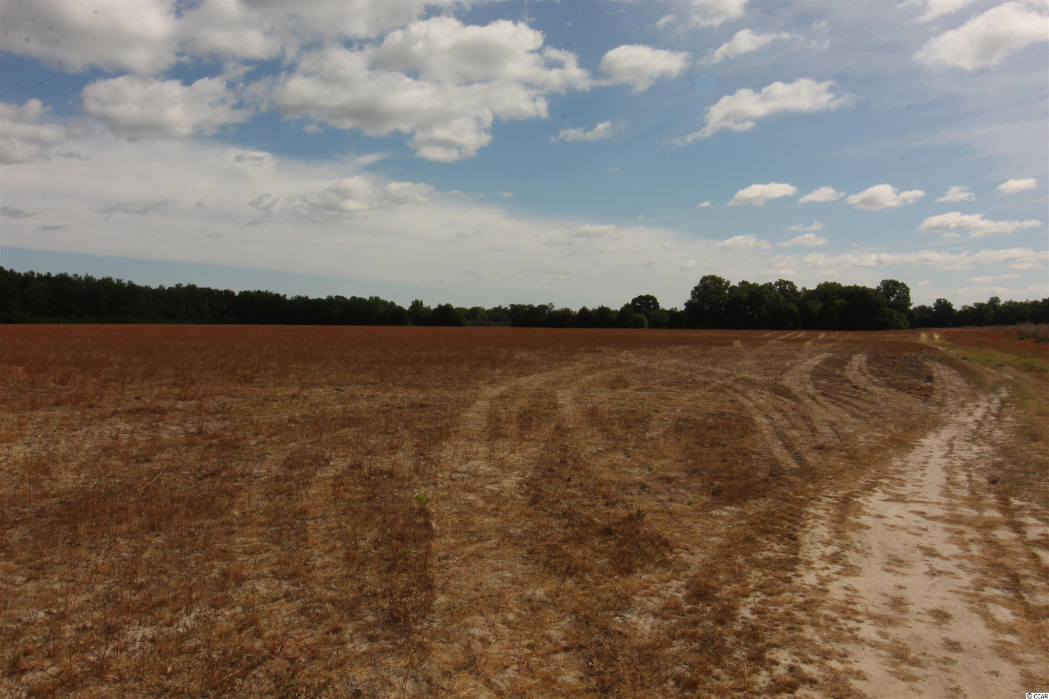 Tbd Old River Rd. Property Photo 8
