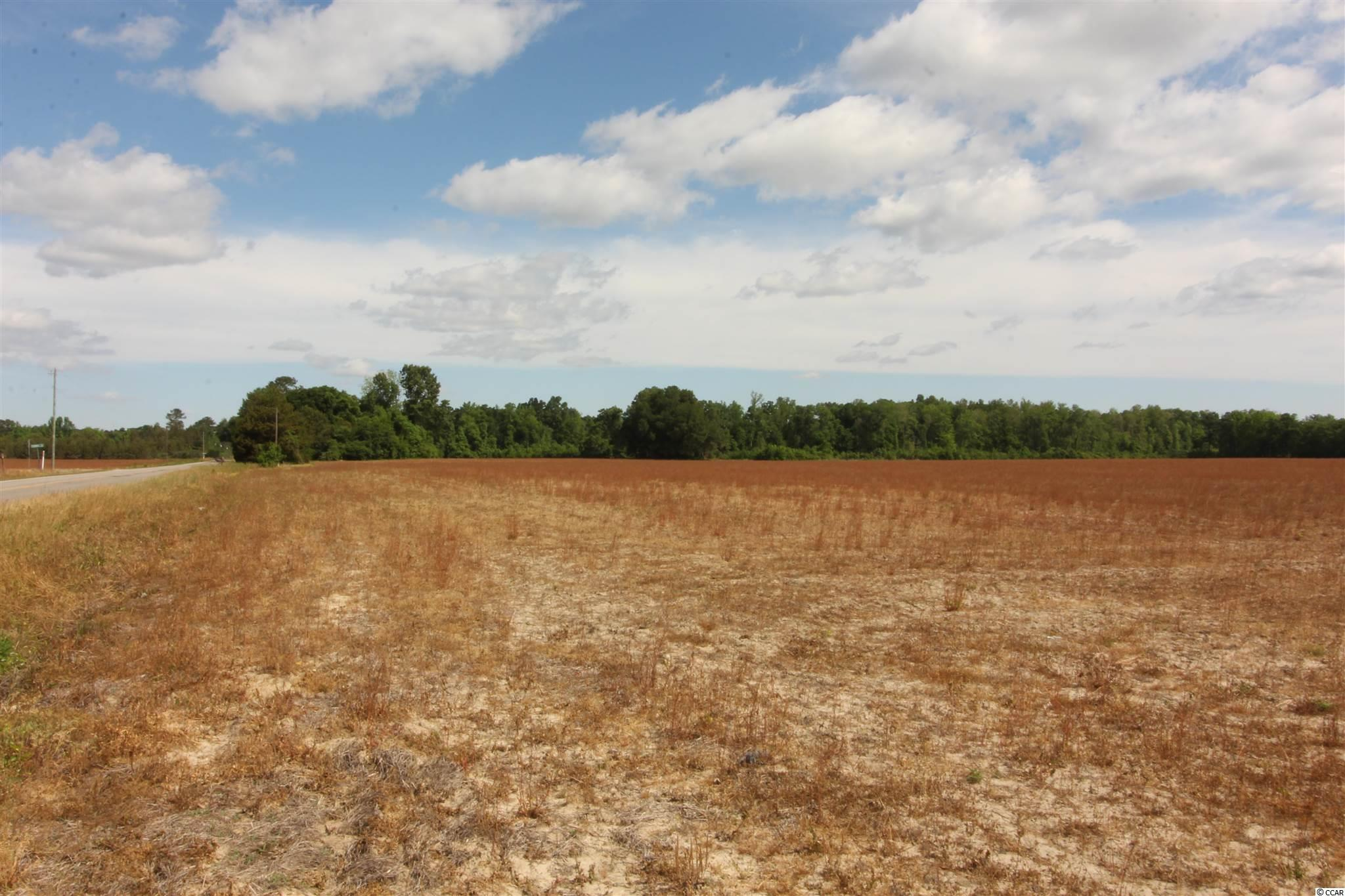 Tbd Old River Rd. Property Photo 11