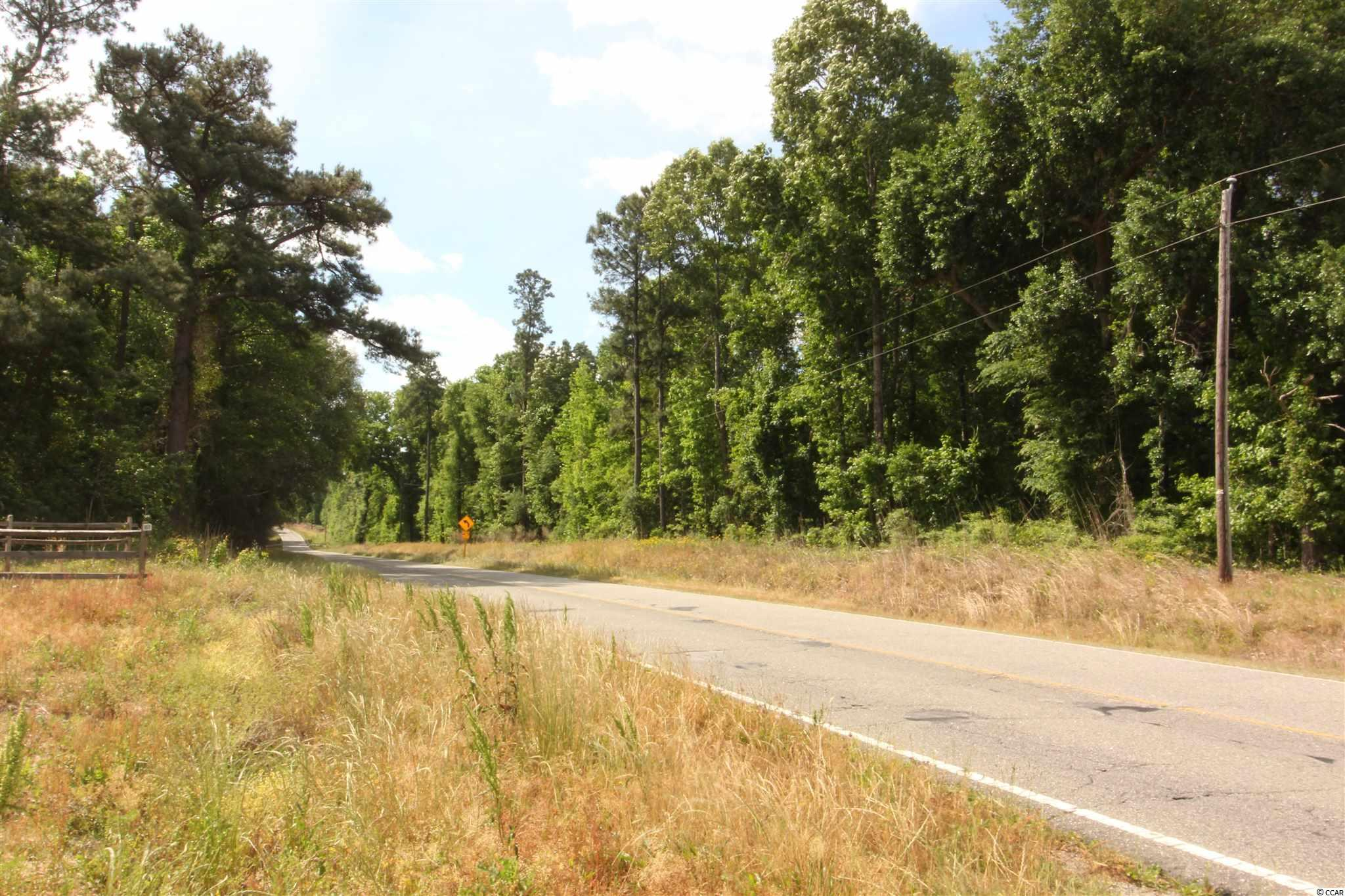 Tbd Old River Rd. Property Photo 15