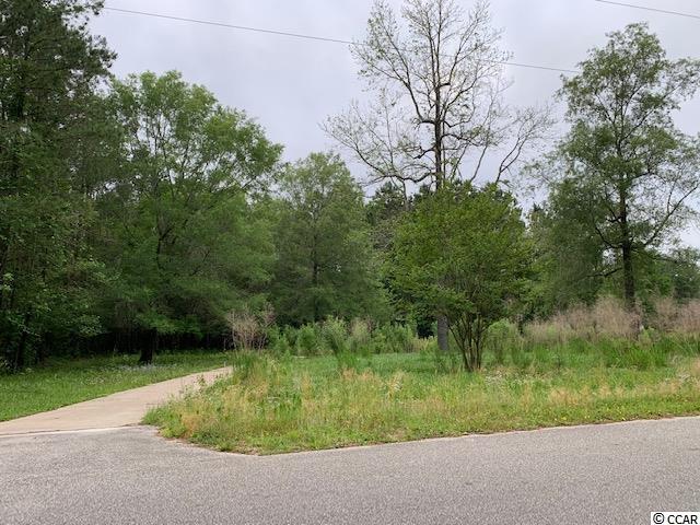 372 Waccamaw River Dr. Property Photo