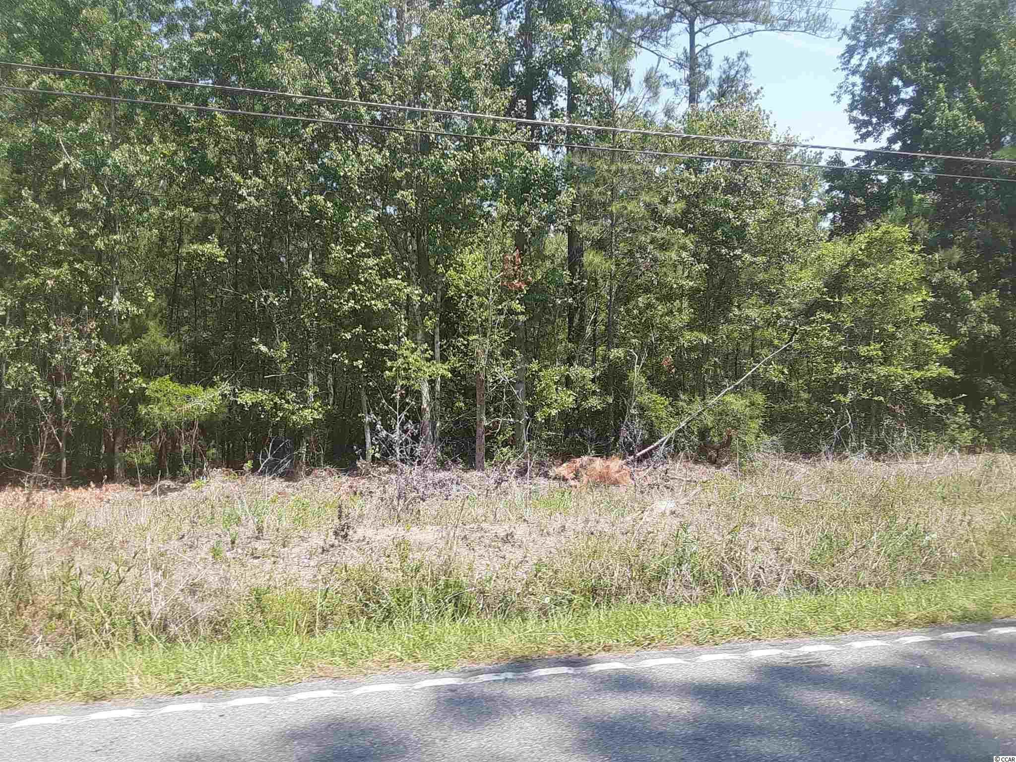 TBD Wedgefield Rd. Property Photo 1
