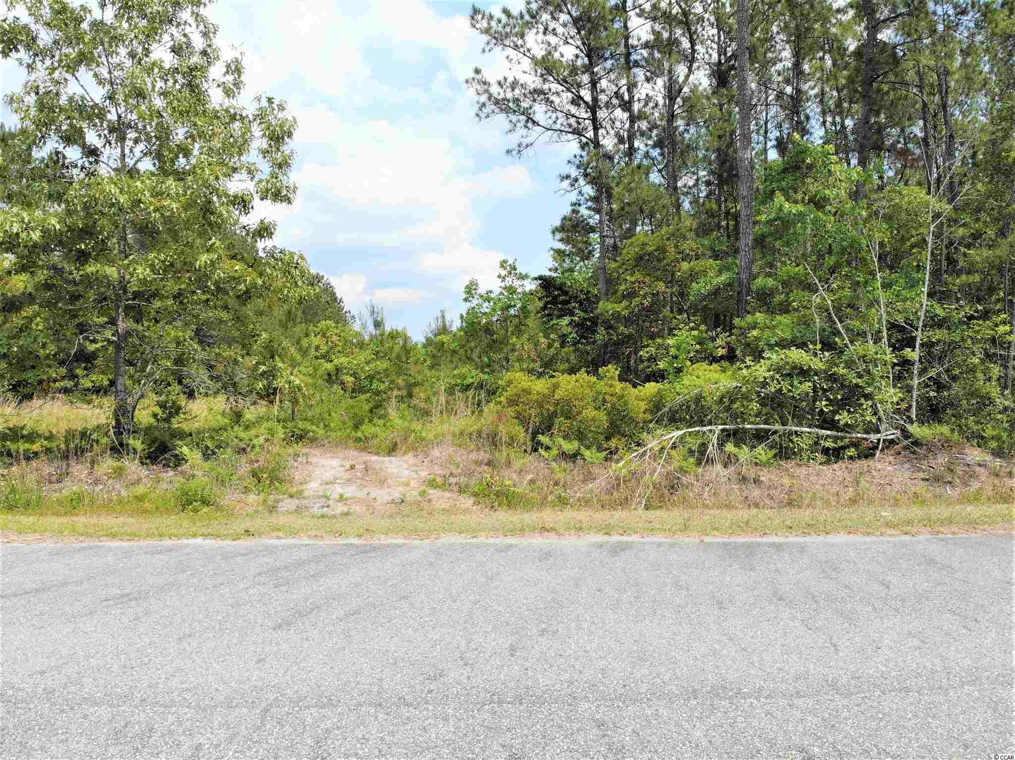 5.37 acres Wilderness Ln. Property Photo 1