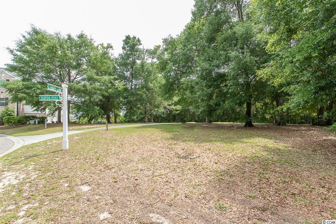 1000 Tarpon Pond Rd. Property Photo
