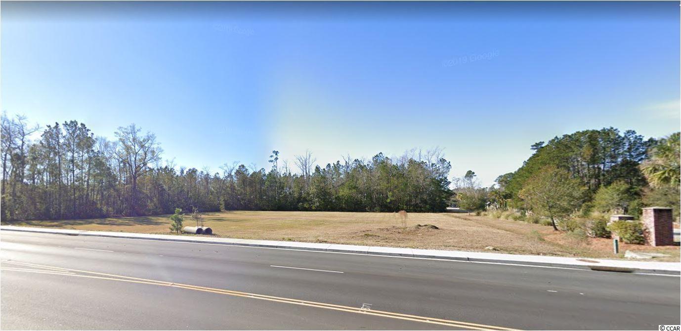 22.15 Acres Highway 707 Property Photo 4