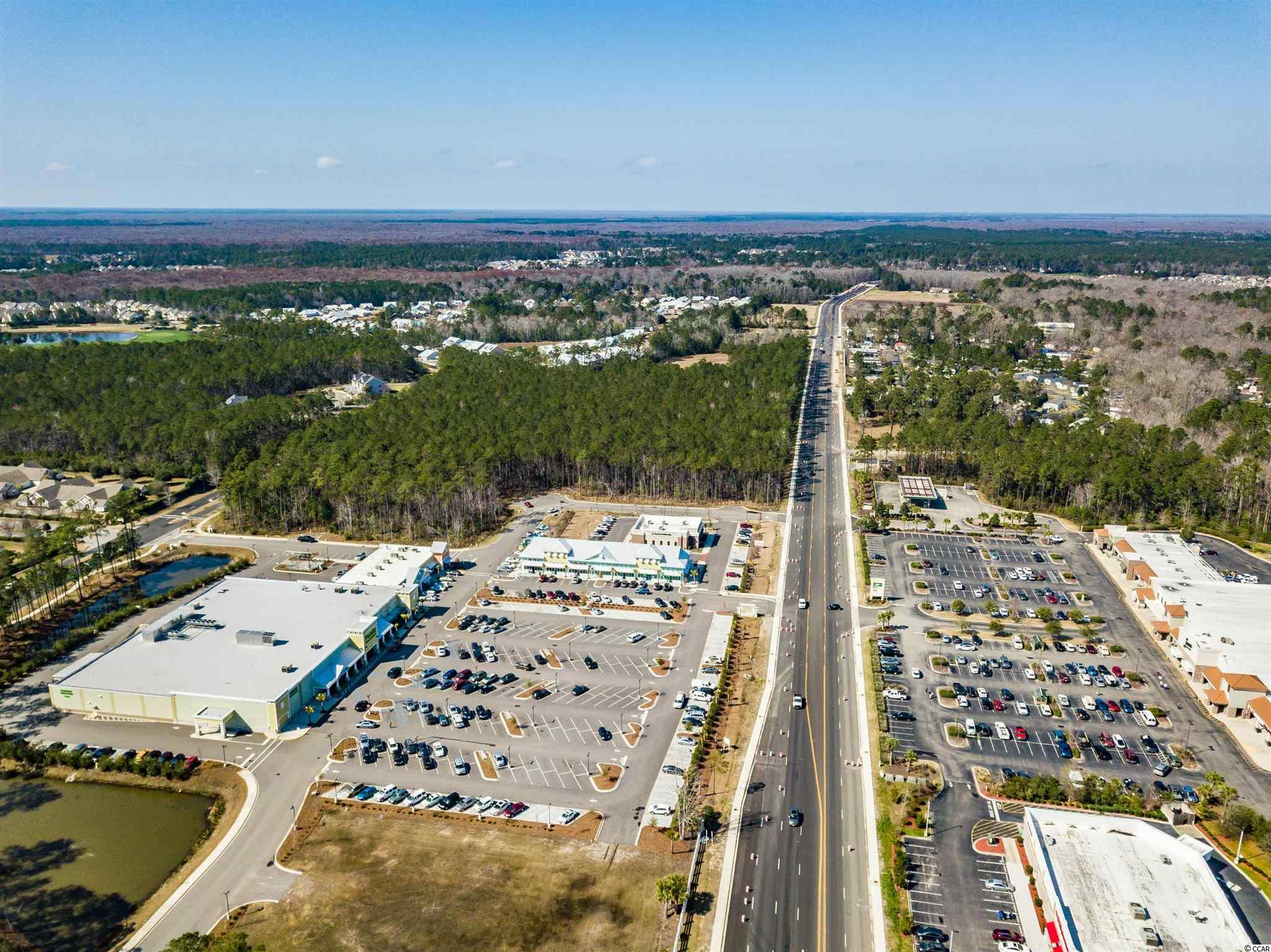 22.15 Acres Highway 707 Property Photo 8
