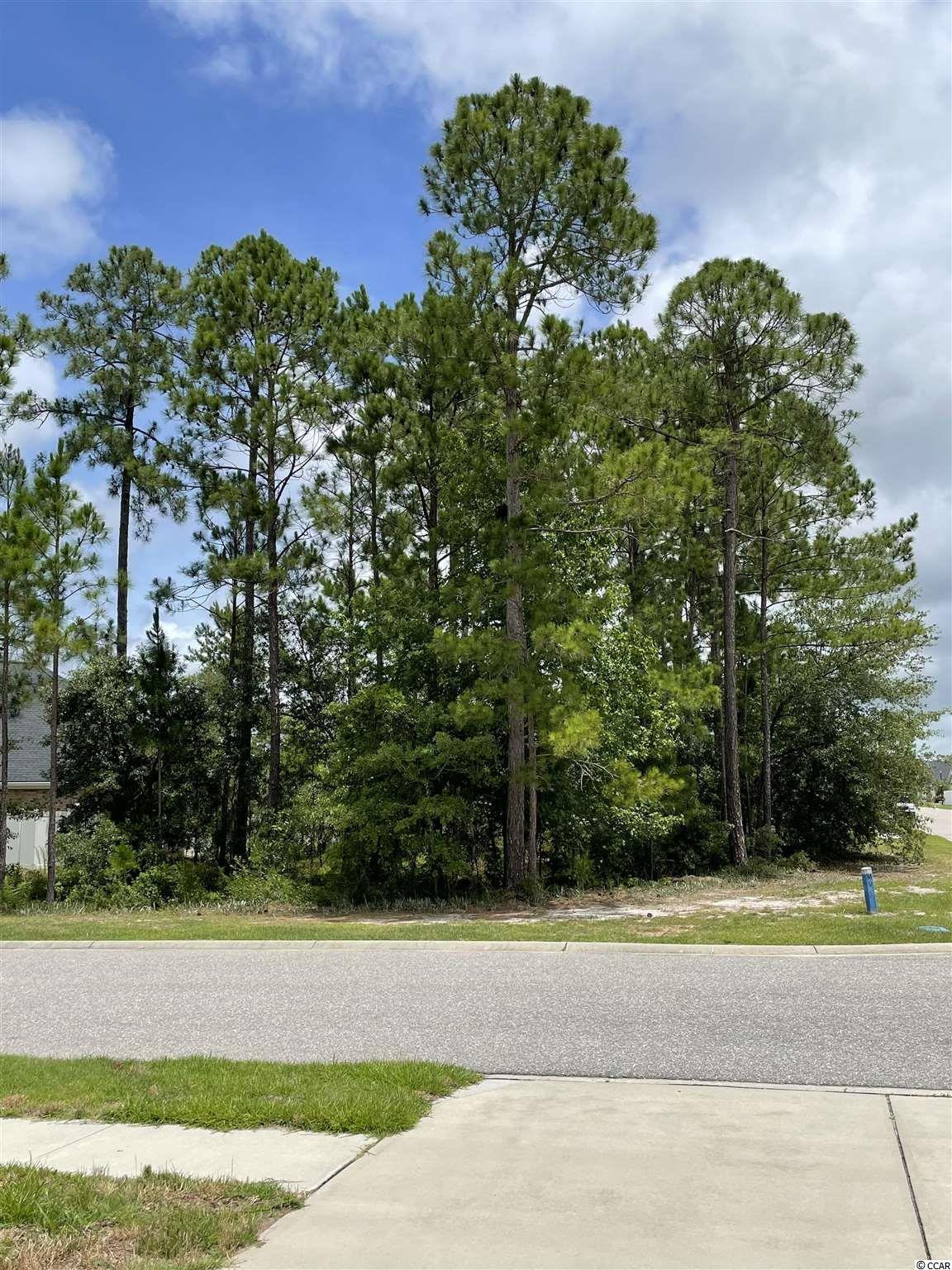 971 Henry James Dr. Property Photo 1