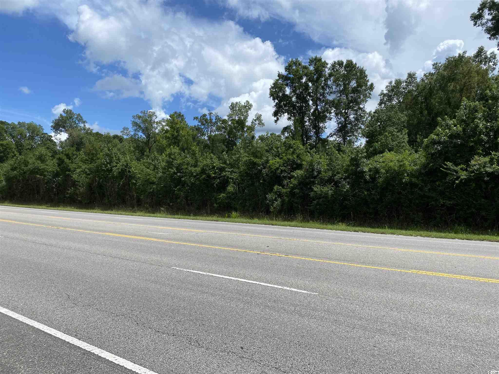 Tbd Highway 378 Property Photo 4