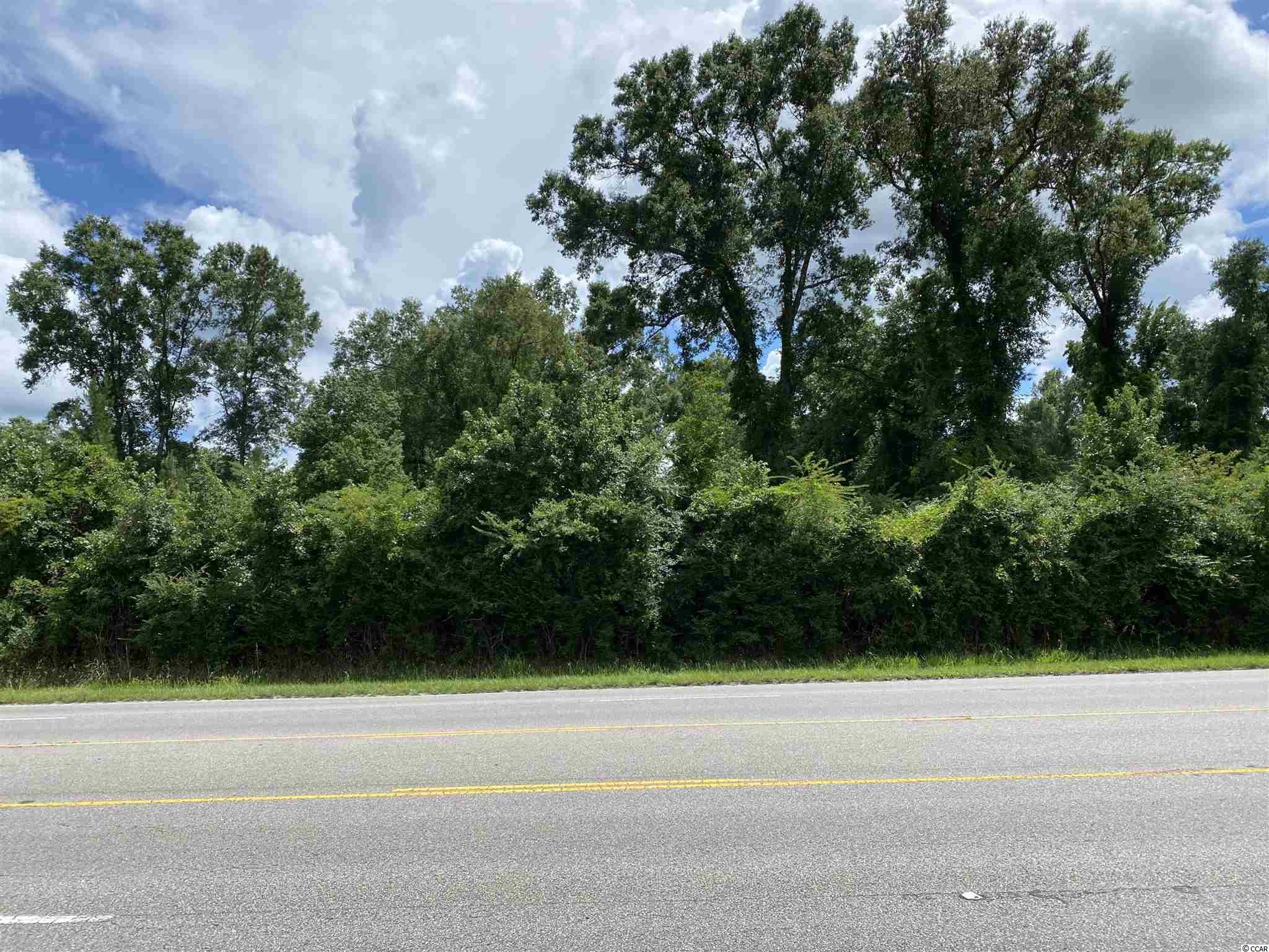 Tbd Highway 378 Property Photo 6