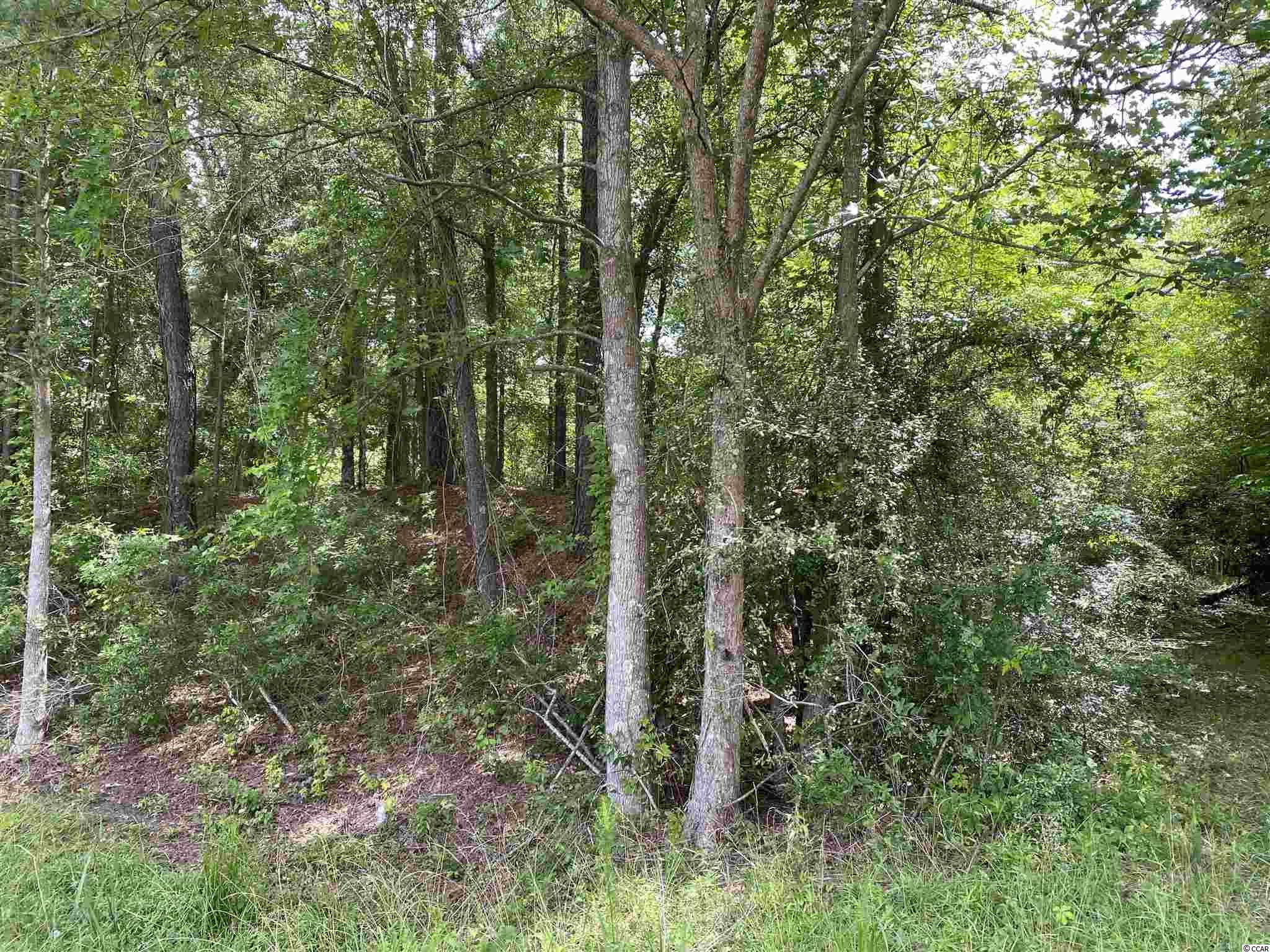 Tbd Highway 378 Property Photo 15