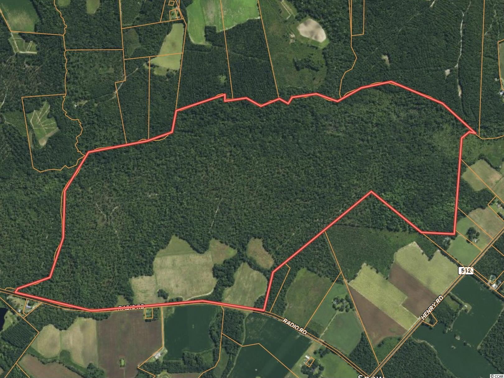 Williamsburg County Real Estate Listings Main Image