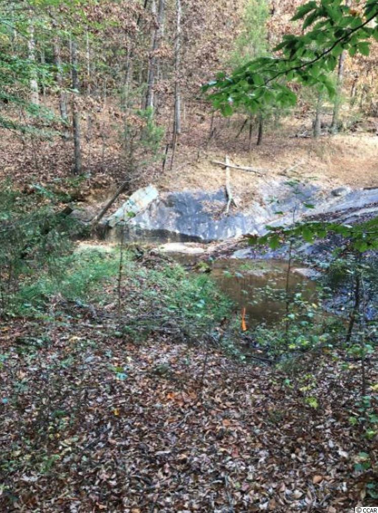 0 Abner Creek Rd. Property Photo 5