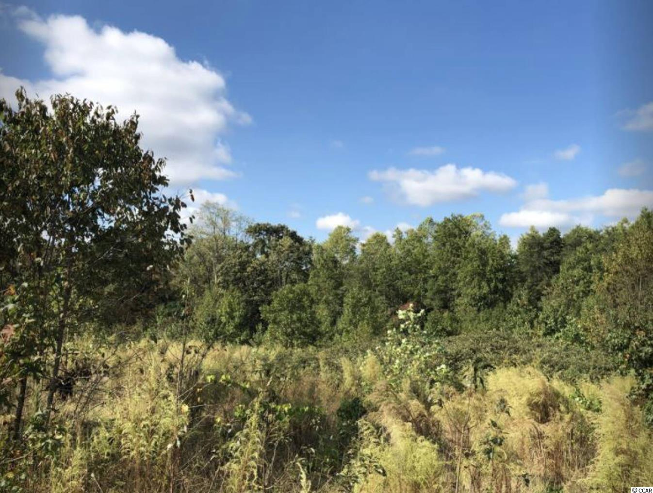 0 Abner Creek Rd. Property Photo 6
