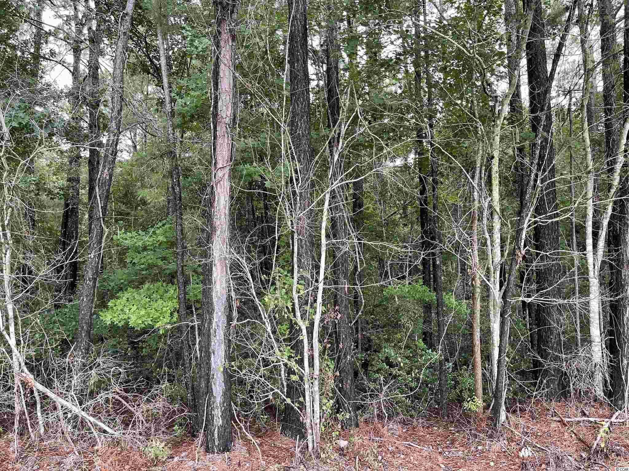 Highway 430 Property Photo