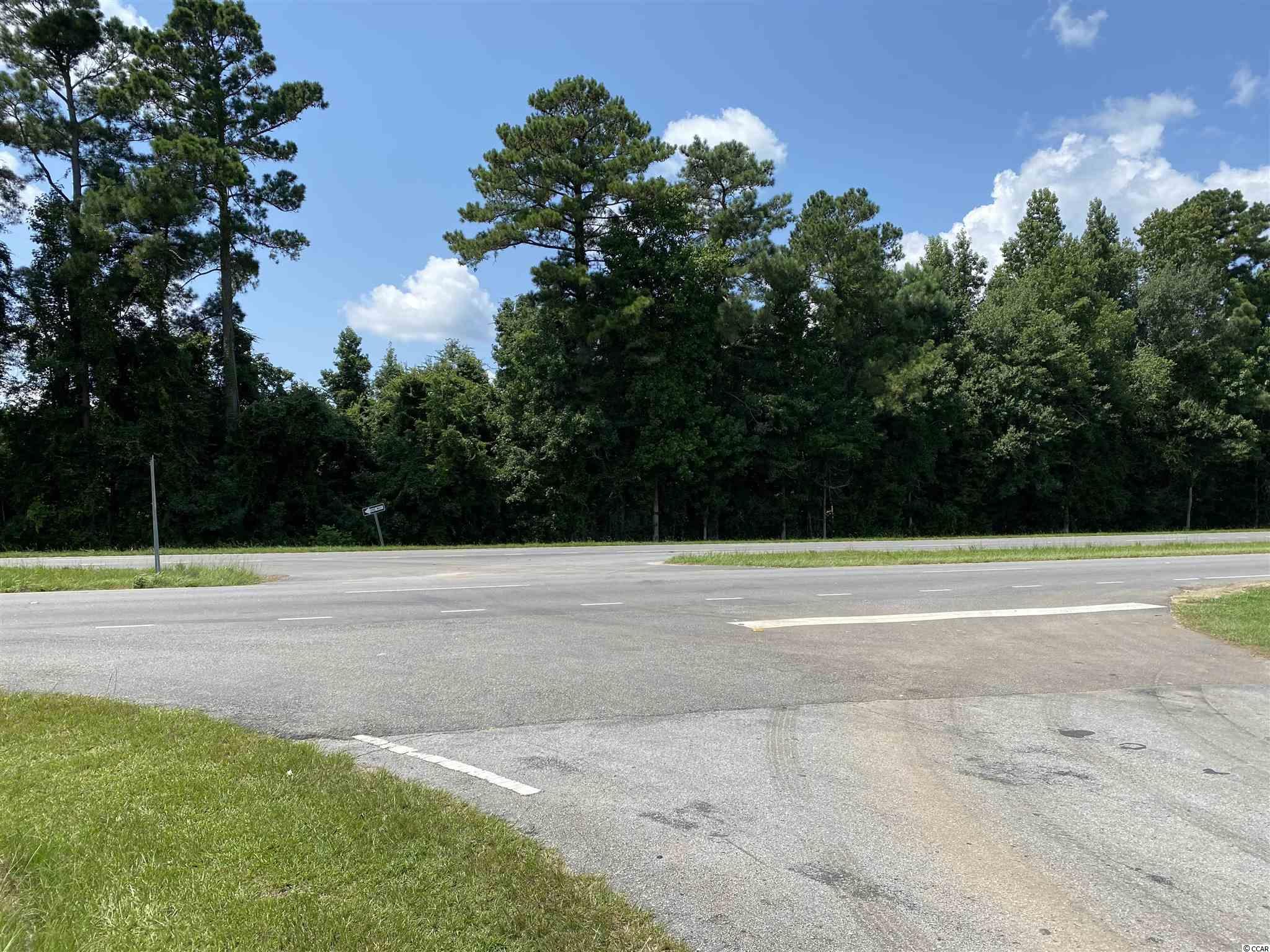 Tbd Highway 501 Property Photo 2