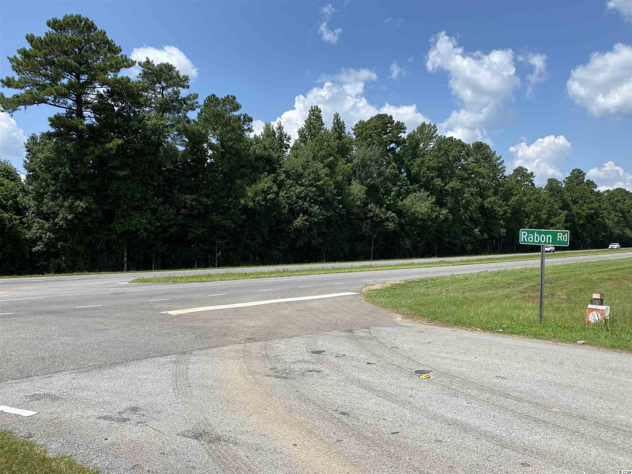 Tbd Highway 501 Property Photo 3