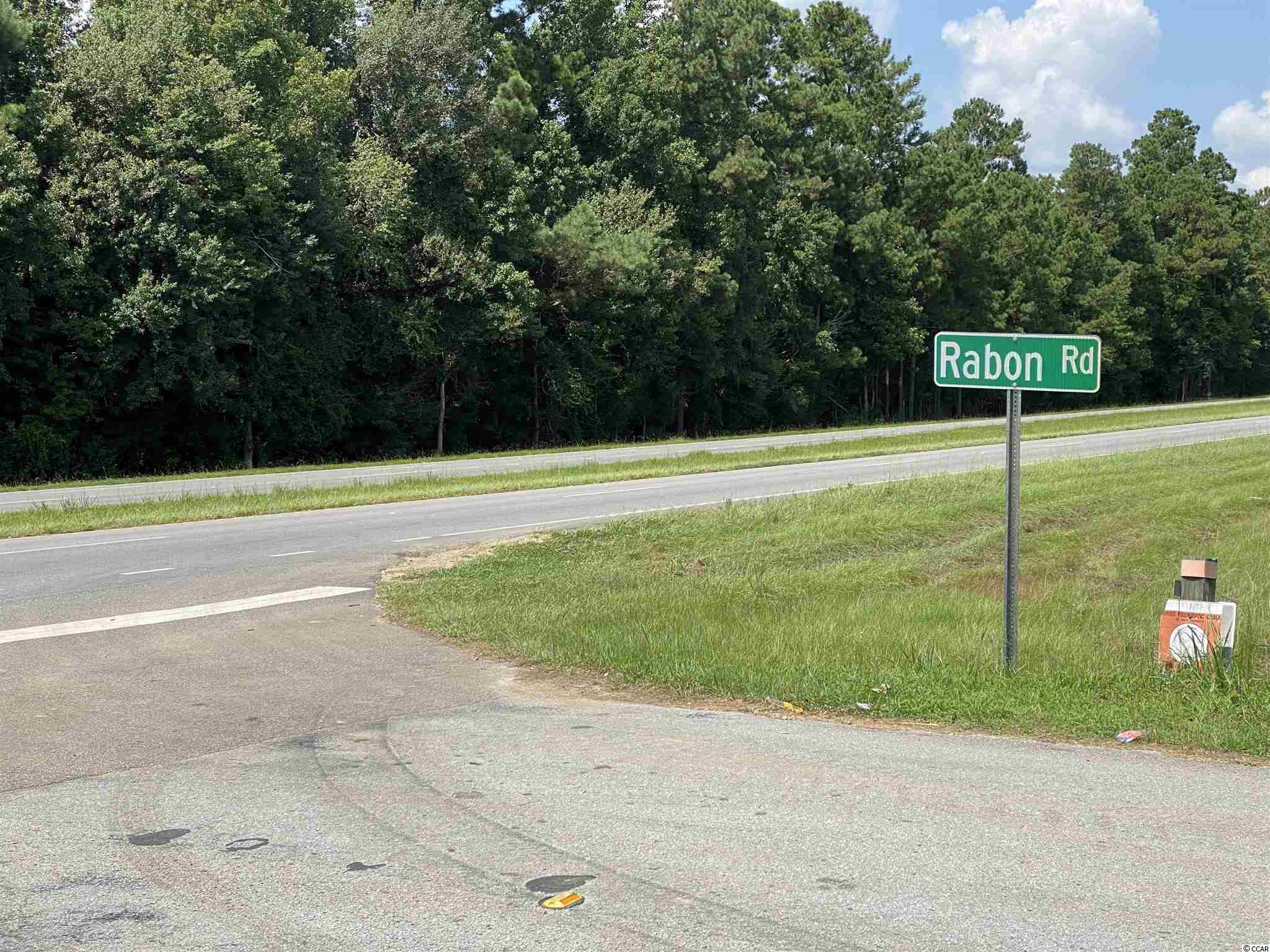 Tbd Highway 501 Property Photo 4