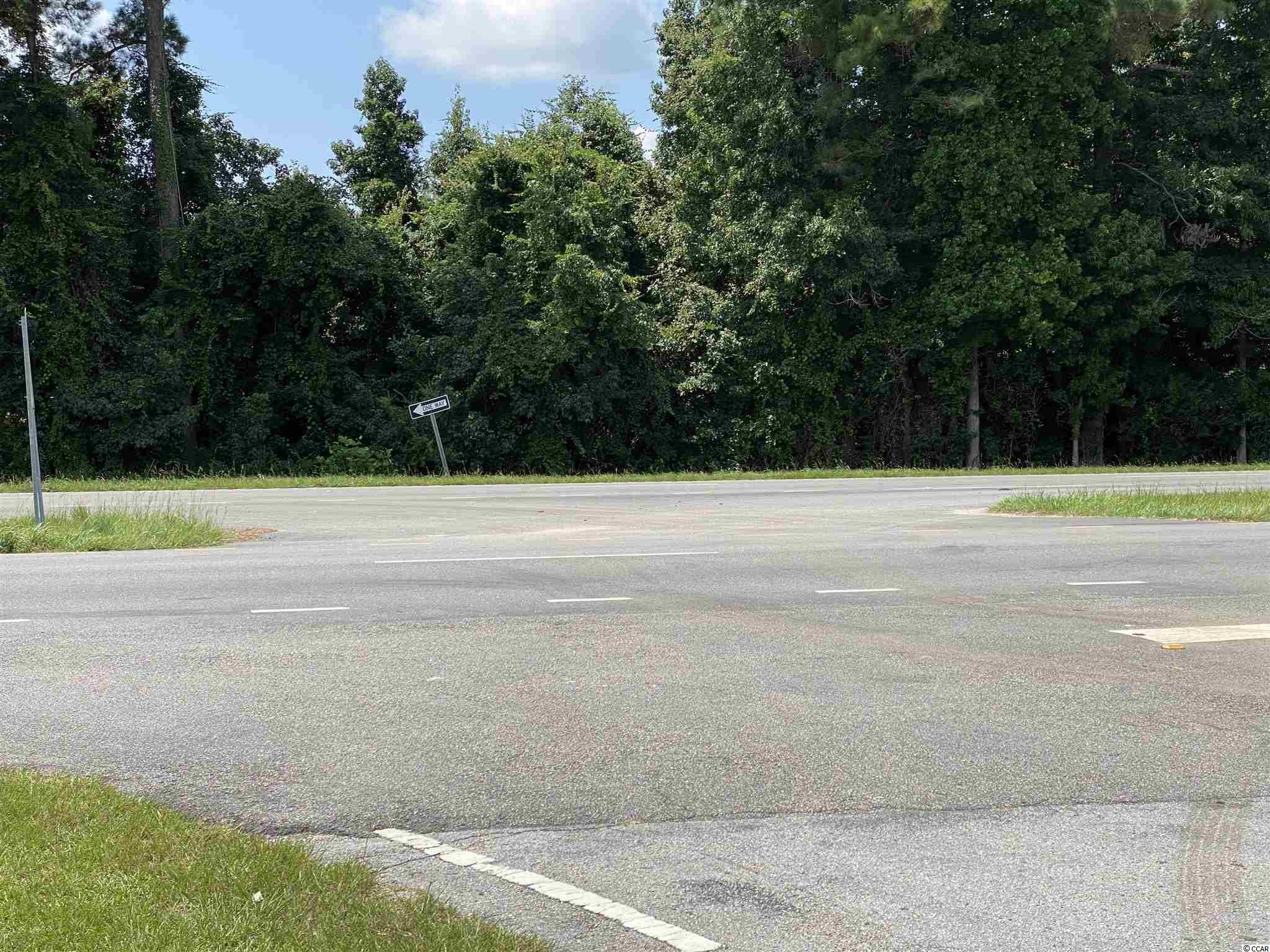 Tbd Highway 501 Property Photo 5