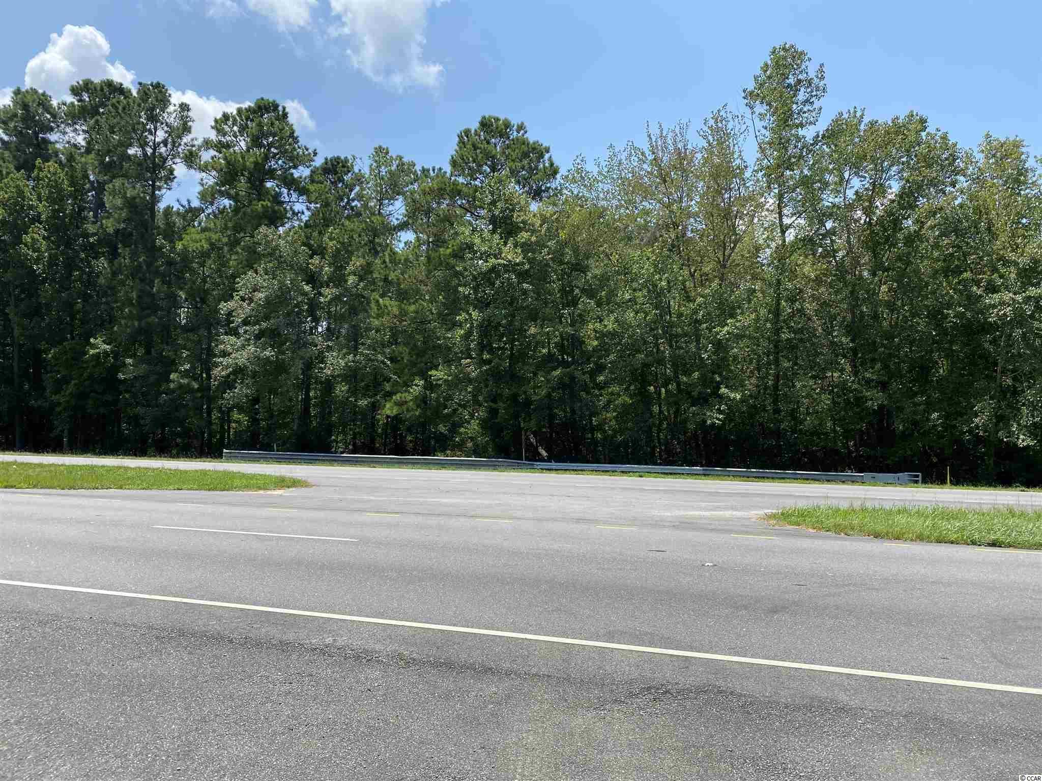 Tbd Highway 501 Property Photo 11