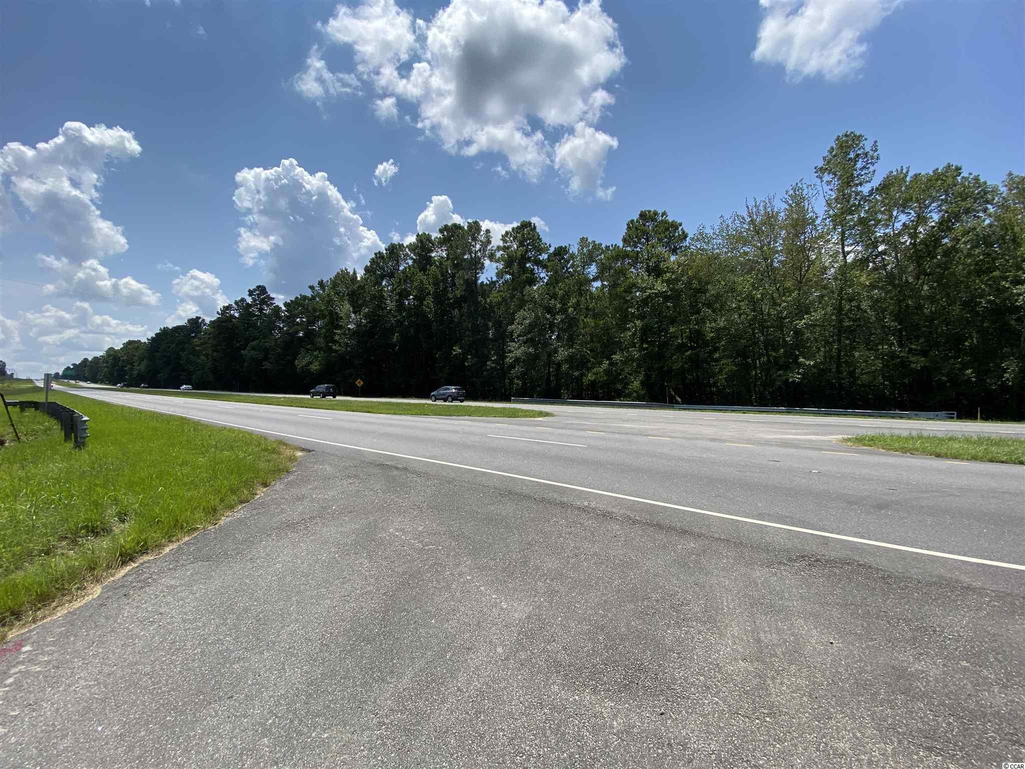 Tbd Highway 501 Property Photo 14